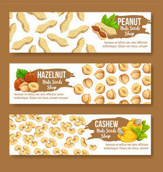 Set of colourful horizontal banners with nuts vector