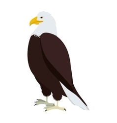 silhouette eagle in standing position vector image