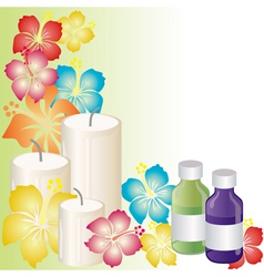 aromatherapy vector image vector image