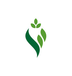 letter v herbal nature logo icon vector image