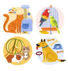 pets design concept vector image