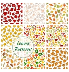 seamless patterns trees leaves vector image