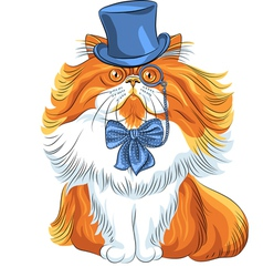 hipster cute red fluffy Persian cat in a blue hat vector image vector image