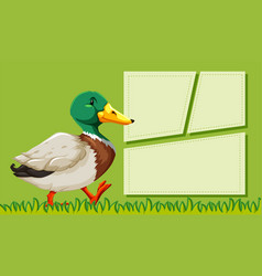 a duck on note template vector image