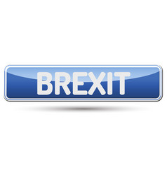 brexit - abstract beautiful button with text vector image
