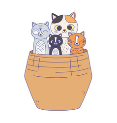 Cute cats in wicker basket isolated on white vector