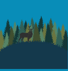 forest landscape with deer and forest of firs vector image