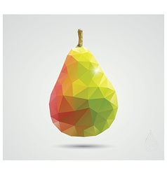 Geometric polygonal fruit triangles pear vector image