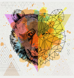 Hipster animal realistic and polygonal bear vector