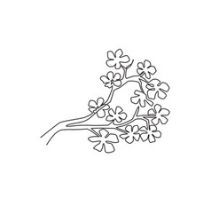 one continuous line drawing beauty fresh cherry vector image