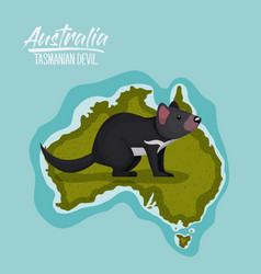poster tasmanian devil in australia map in green vector image