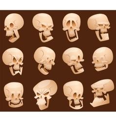 Skull cartoon faces vector image