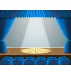 Spotlight on the theater stage vector image vector image