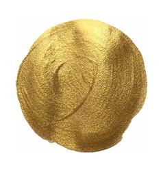 Golden Paint Blot vector image
