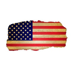 Usa Flag With Rip Paper vector image