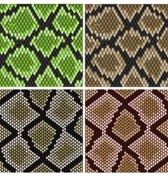 Seamless snake skin patterns vector image vector image