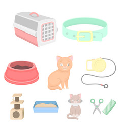 cat equipment set icons in cartoon style big vector image
