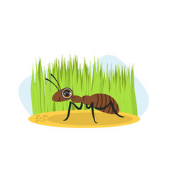 cute ant insect character on nature spring or vector image
