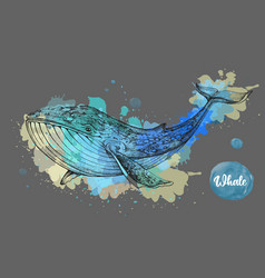 realistic whale on watercolor background vector image