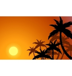 Silhouette of palm forest at sunset vector