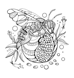 Wasp coloring book for adults vector image