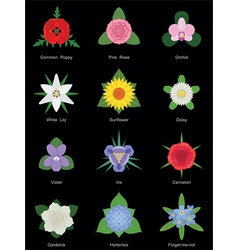 Flower collection no gradients vector image vector image