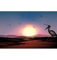 a sunset at desert with a flock birds vector image