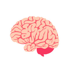 Brain isolated icon symbol mind and intellect vector