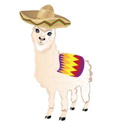 Cartoon alpaca in sombrero vector
