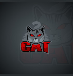 cat logo template high resolution image vector image
