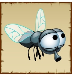 Gray fly with huge eyes funny insect vector image