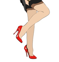 Legs and garters vector image