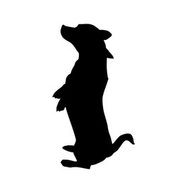 silhouette of a dog vector image