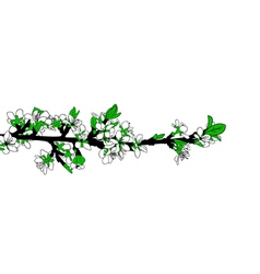 Blooming branch vector
