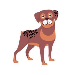 brown dog black spots symbol vector image