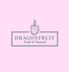 Dragon fruit abstract sign symbol or logo vector