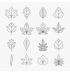 Leaf line icons set vector image