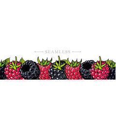 raspberry and blackberry border seamless pattern vector image