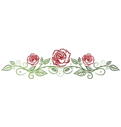 Roses floral vector image vector image