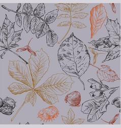 Seamless pattern autumn 1 vector