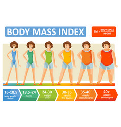 body mass index woman age flat infographics vector image