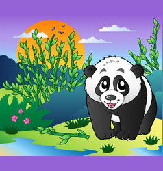 cute small panda in bamboo forest vector image