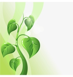 Green sprout with leaves and copyspace for your vector image