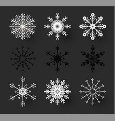 snowflakes set elegant design elements vector image