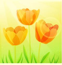 three bright tulips vector image