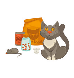 pet vet veterinary cat food and treatment pills vector image vector image