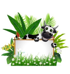 funny cow with blank sign vector image