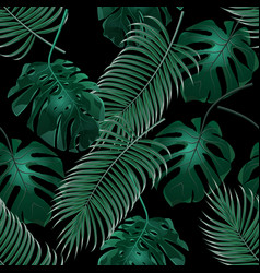green tropical palm leaves and monstera jungle vector image