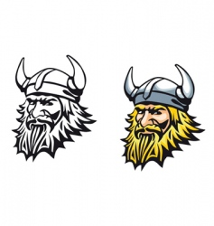 ancient viking vector image vector image