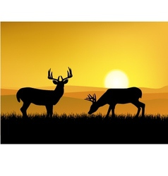 deer with sunset background vector image vector image